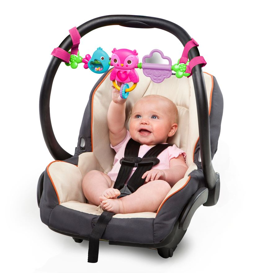 Bright Starts Busy Birdies Carrier Toy Bar image-0