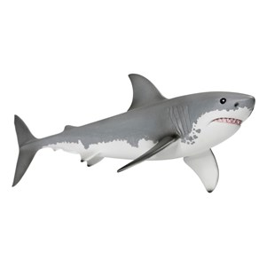 Great Whilte Shark