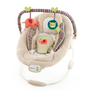 Comfort & Harmony Cosy Kingdom Cradling Bouncer