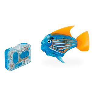 HEXBUG AquaBot Remote Control Angelfish - Assortment
